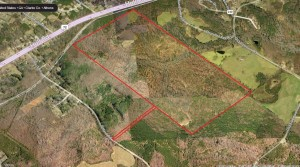 Bullock Tract – Large Industrial Tract in Athena Industrial Park – Pittard Rd
