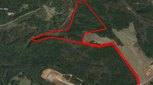 XXSOLD – Wilson Estate +/-98.45 acres Buddy Faust Rd-Crawford, GA-Oglethorpe County