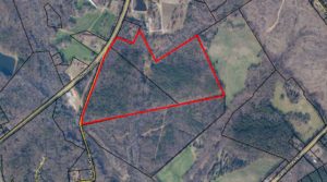 Comer Road – Wilson Tract – 63.91 ac – Oglethorpe Co.