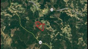 Cagle Tract – Oglethorpe Co – 524.32 ac