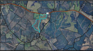Cagle Tract – Wilkes Co. – 123.86 ac
